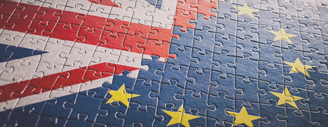 Uk UE flag puzzle