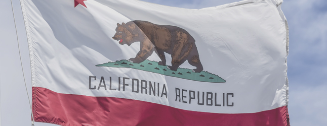 Image of California state flag